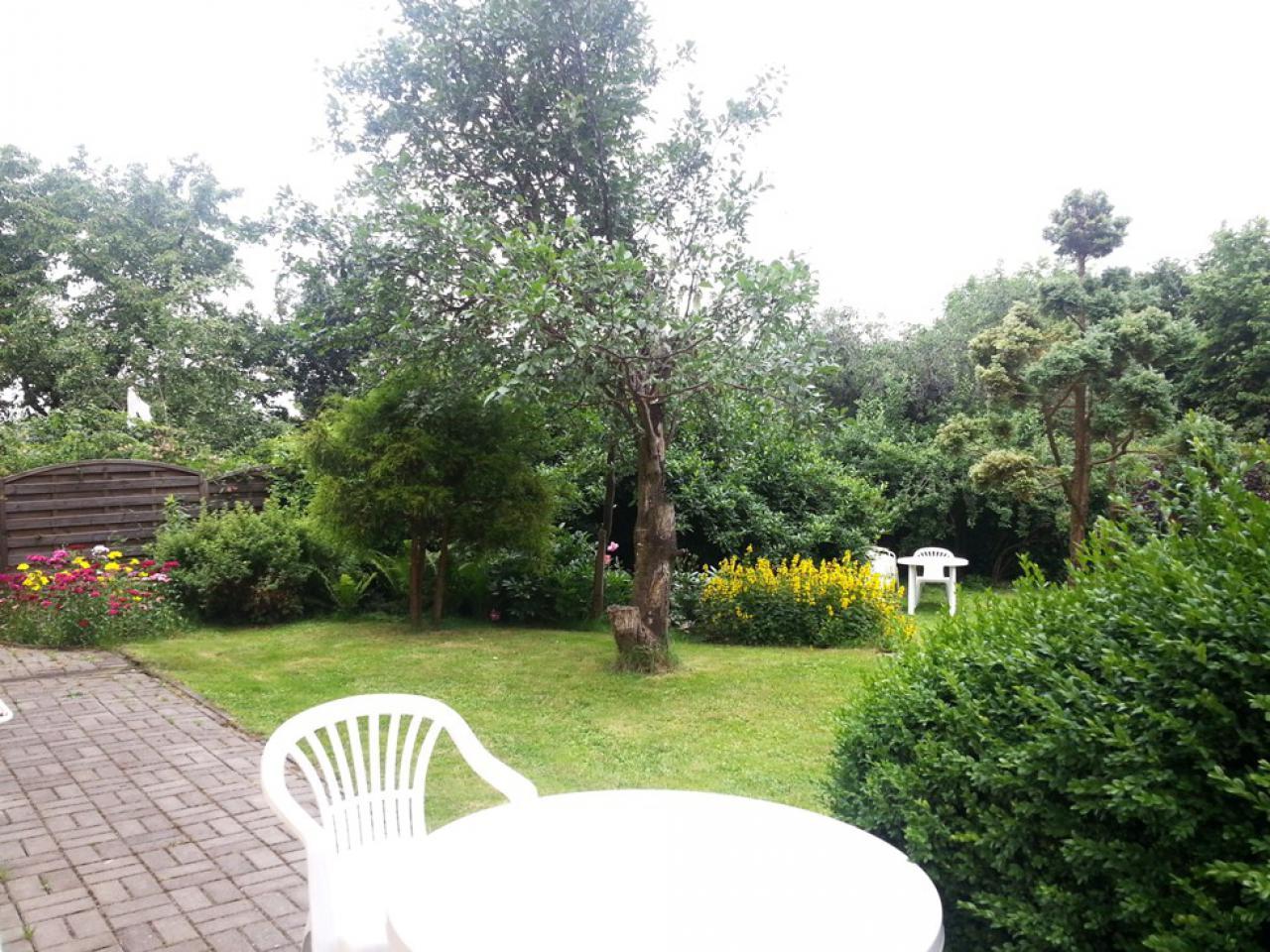 Ogród 20150706_131037