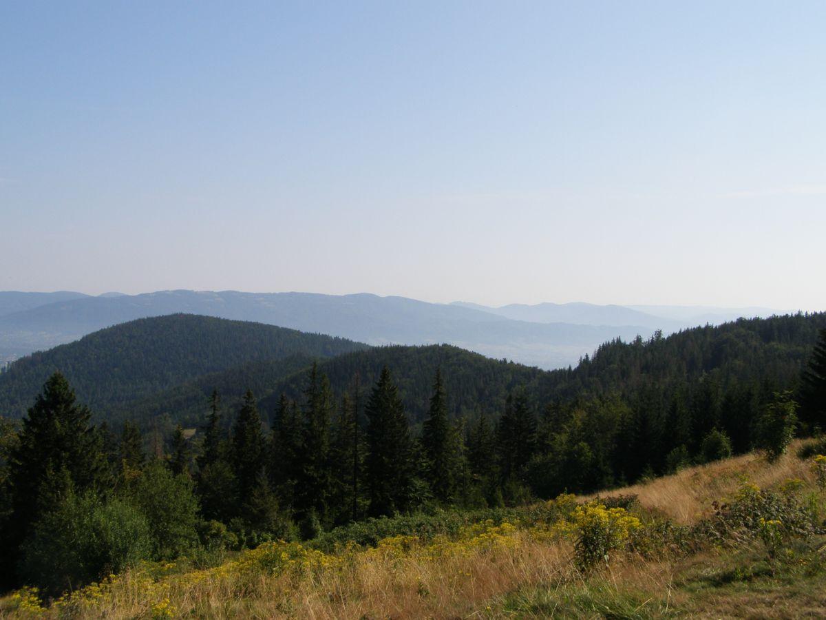 Widok z Jaworzyny na Beskid Śląski